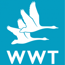 Wildfowl And Wetland Trust - Welney - Logo - Christchurch Eco